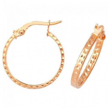 Just Gold Earrings -9Ct Dia Cut Earrings, ER652
